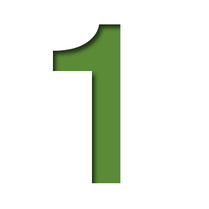 number1 - Forward Carers